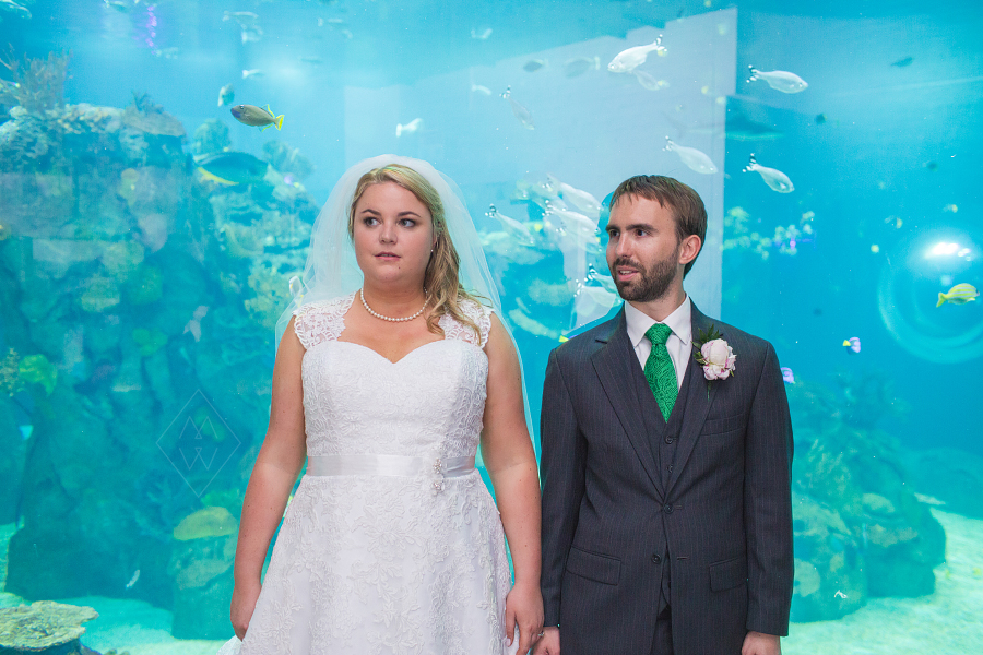 Toledo-Zoo-Aquarium-wedding-photographer-green