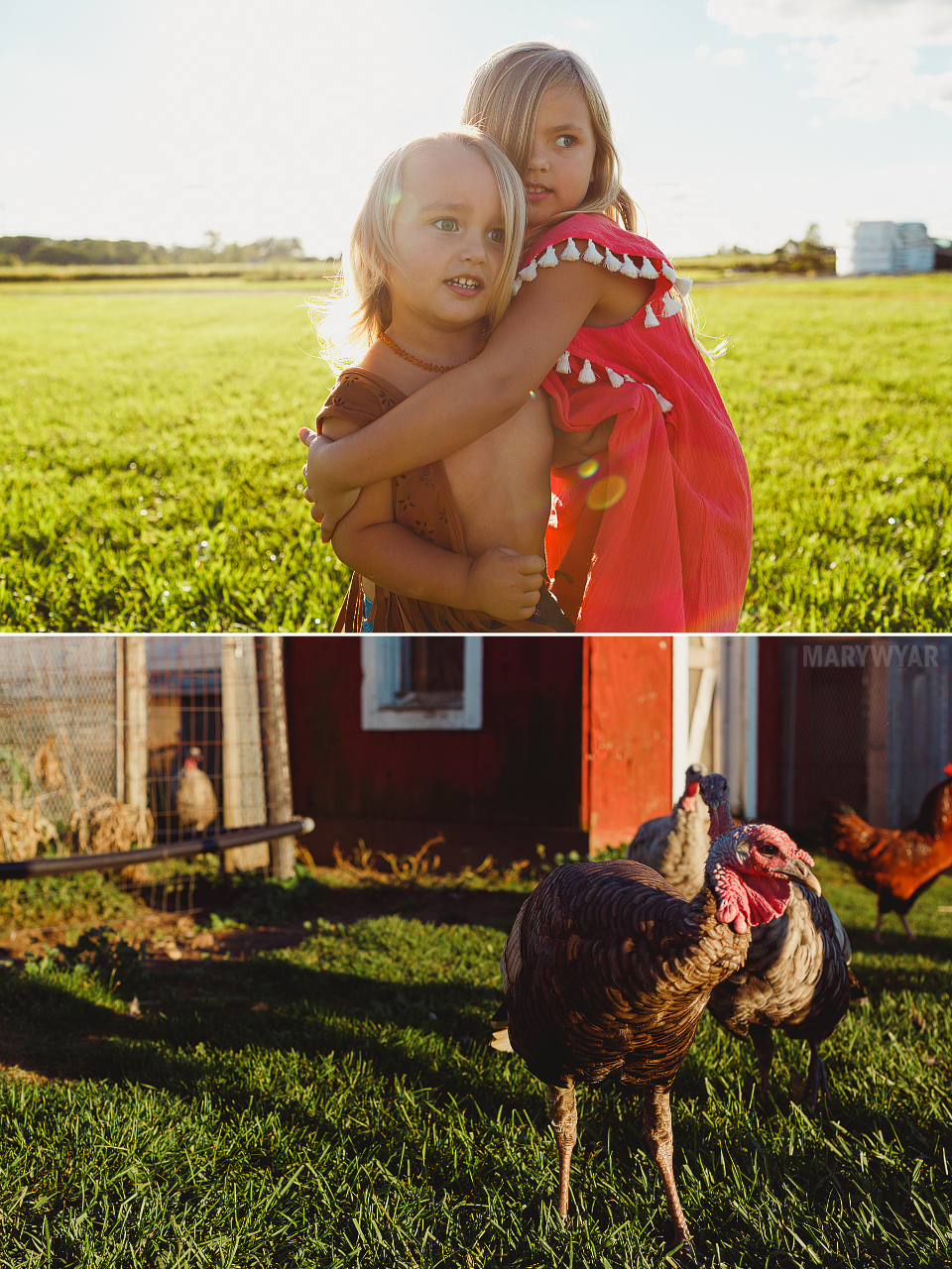 Farm-Hippie-Styled-Egg-Family-photos-005