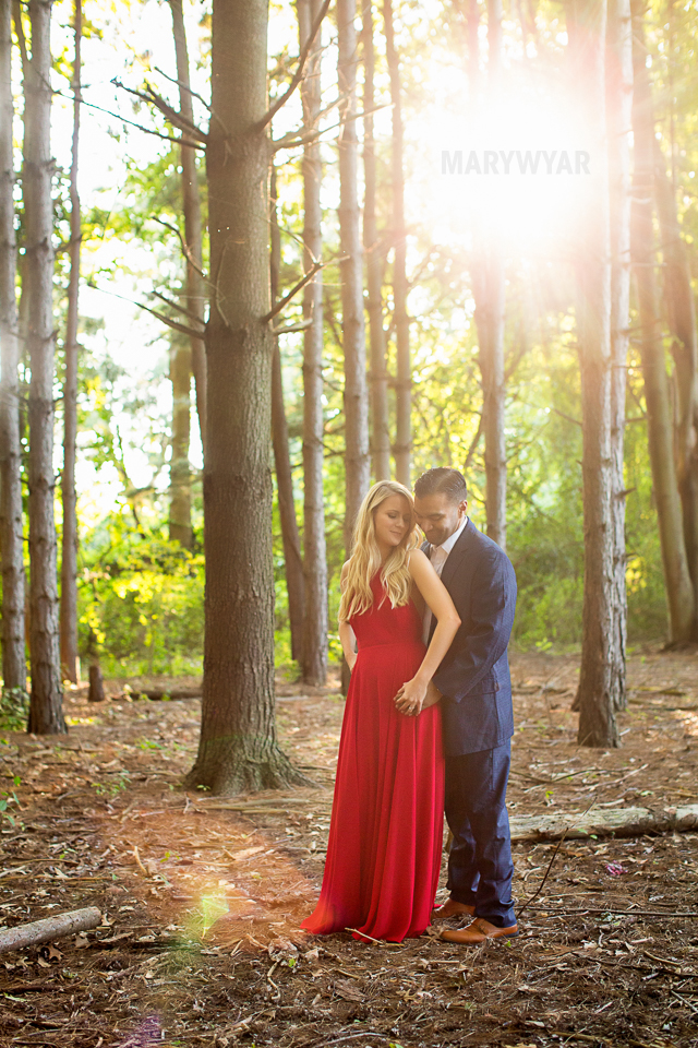 Toledo-Golden-Hour-Engagement-Photos-011
