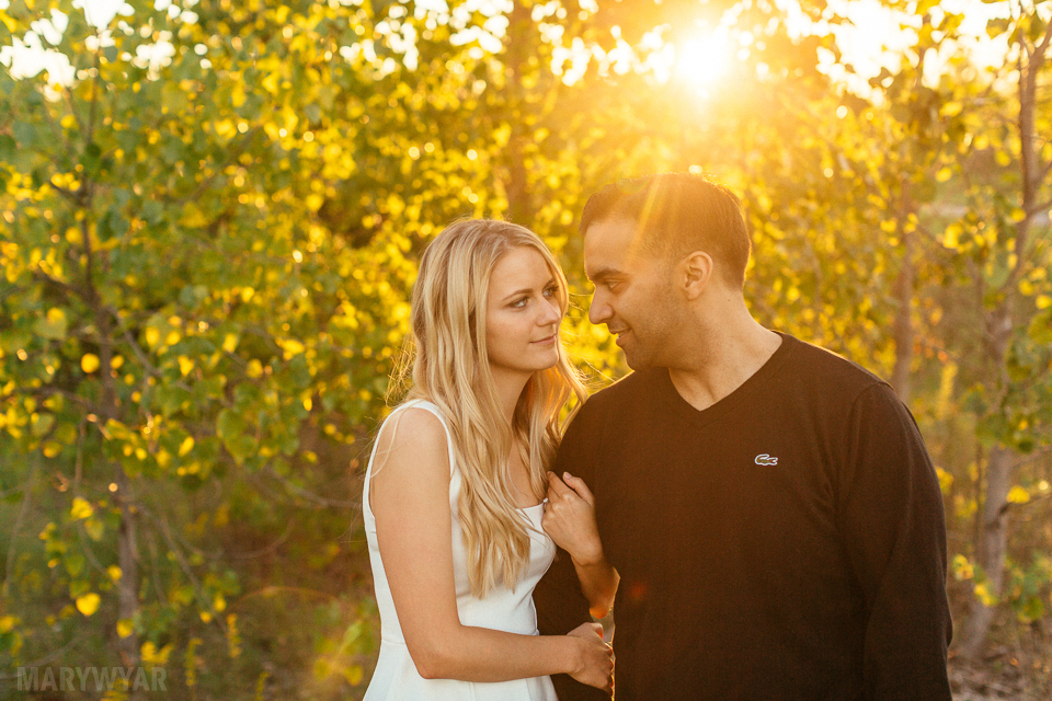 Toledo-Golden-Hour-Engagement-Photos-018