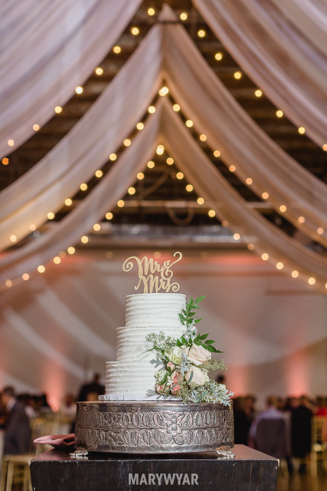 registry-bistro-the-secor-toledo-wedding-photos38
