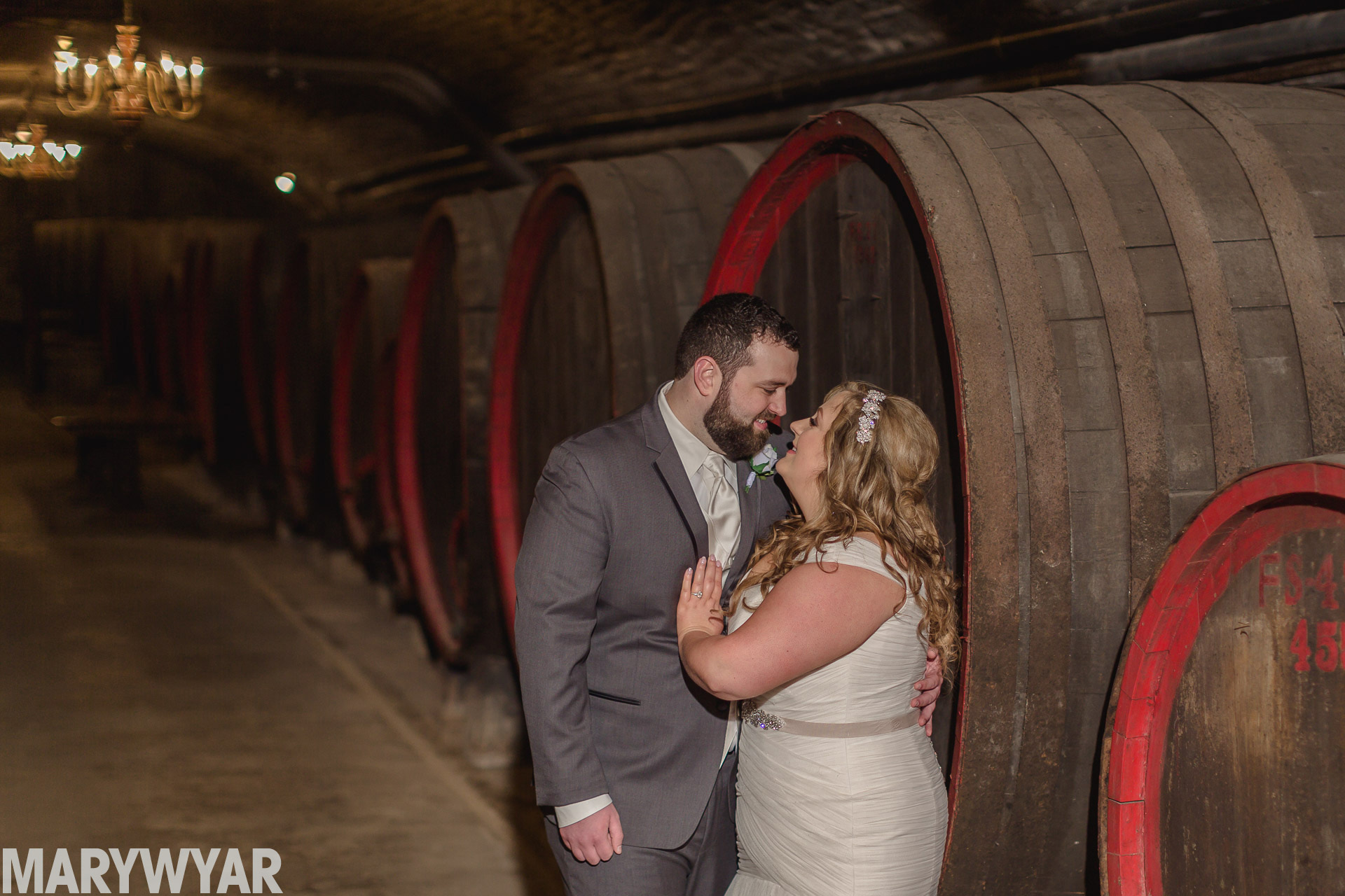 mon ami winery wedding photos port clinton ohio