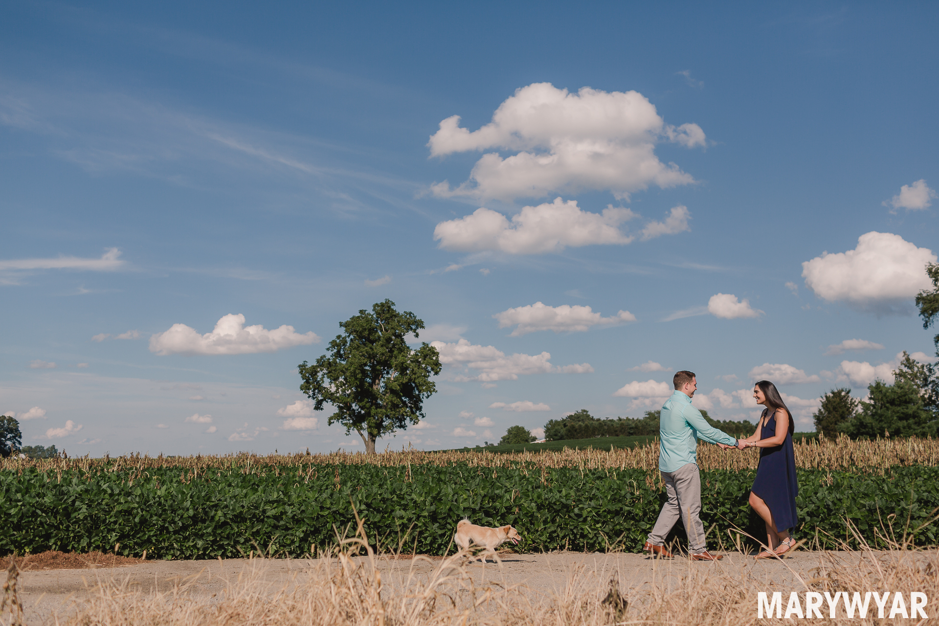 Findlay engagement photos rural ohio