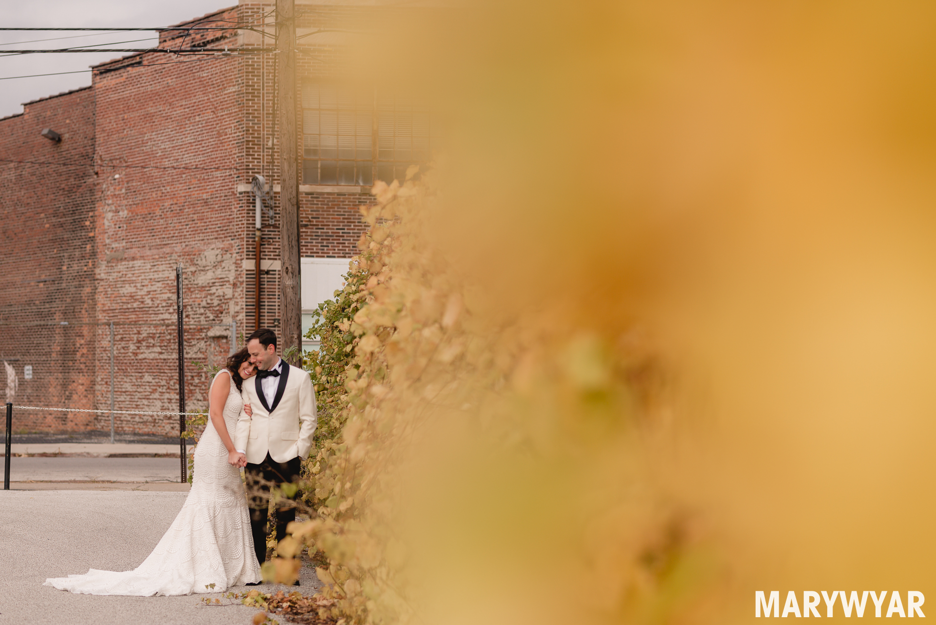 downtown Toledo wedding photos