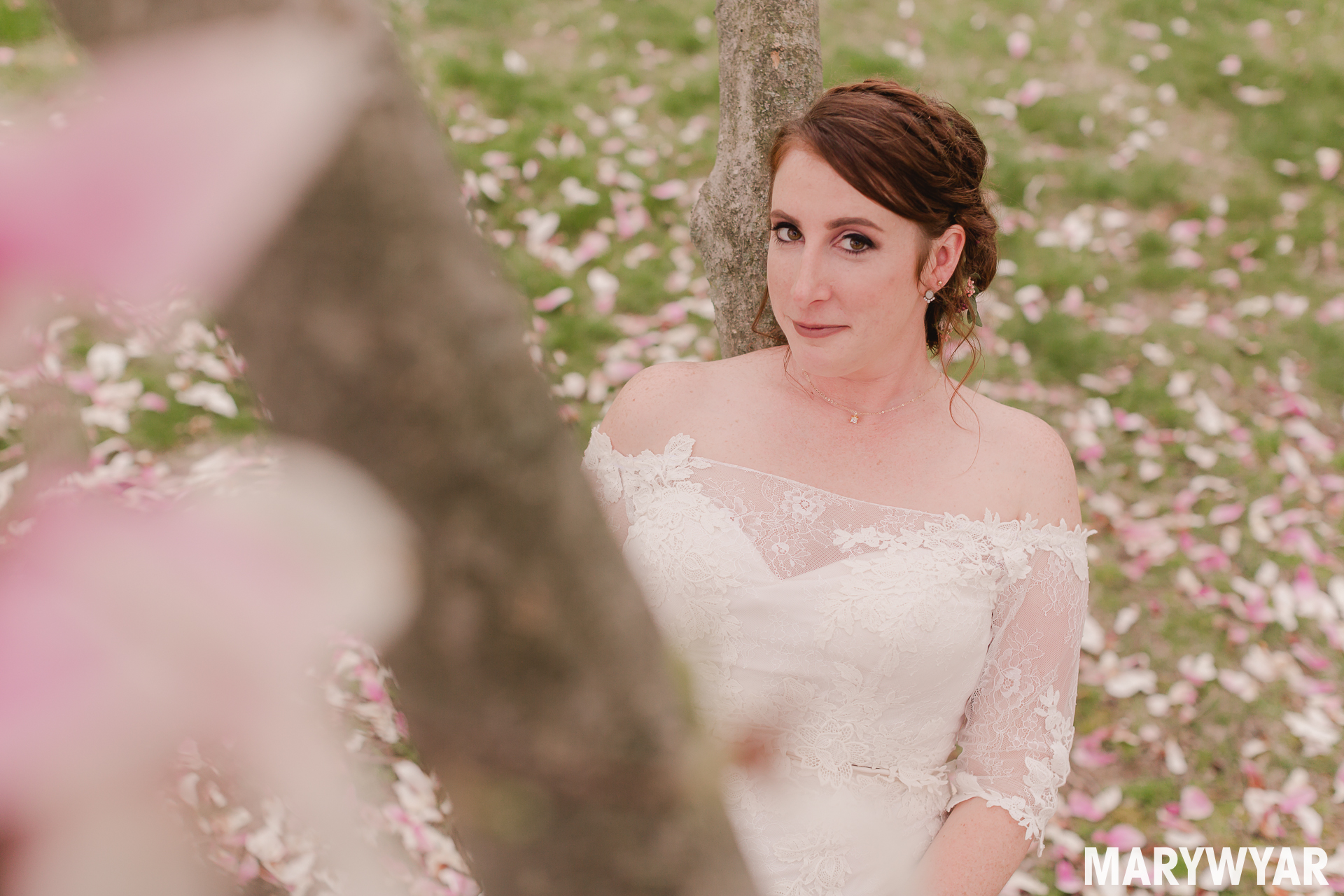 Wedding Photos Scarlet Oaks Estates Findlay Ohio